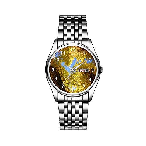 Luxury Brand Stainless Steel Japanese Quartz Analog Display Date Week Waterproof Men's Quartz Watch Business Male Wristwatches Aspen Watch -  FCWFC, 1868FC-228