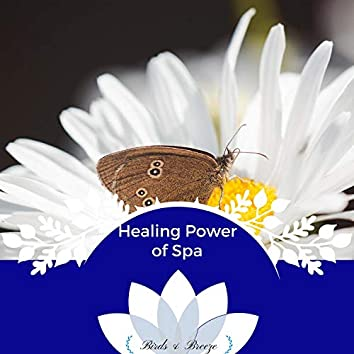 Healing Power Of Spa