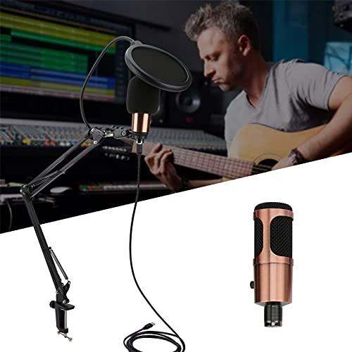 SALUTUY Kit de micrófono, Filtro de Sonido Profesional de Doble Capa, Red, Respuesta de frecuencia Clara, Conjunto de micrófonos, patrón de captación cardioide para Cantar en línea para el Altavoz