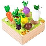 Sunshine smile holzspielzeug Montessori,Karotte Spielzeug,sortierspiel Holz für Kinder,motorik Spielzeug Kleinkind,karottenernte Montessori,pädagogisches Spielzeug Holz