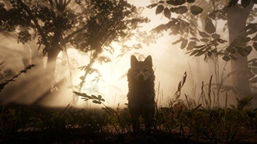 Red Dead Redemption 2: édition spéciale Xbox One - 15