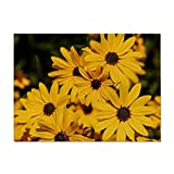 Tapetes para Mesa Cena floral Mesa de mesa Cocina Placemats Pads Hogar accesorios decorativos tela de vajilla Fácil de Limpiar (Color : 2, Size : Grande)