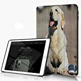 She Charm Carcasa para iPad 10.2 Inch, iPad Air 7.ª Generación,Golden...