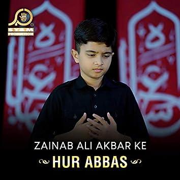 Zainab Ali Akbar Ke - Single