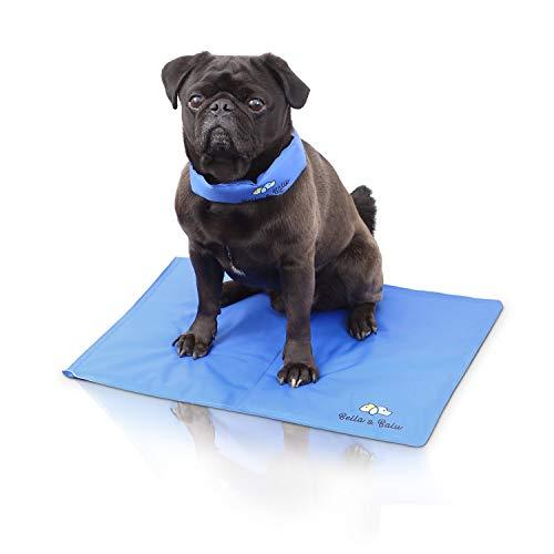 Bella & Ballu Alfombra refrescante para Perros y Gatos + Collar refrescante – La Esterilla refrigerante Protege a su Mascota del Calor – para Interior, Exterior y para el Coche (Tamaño S)