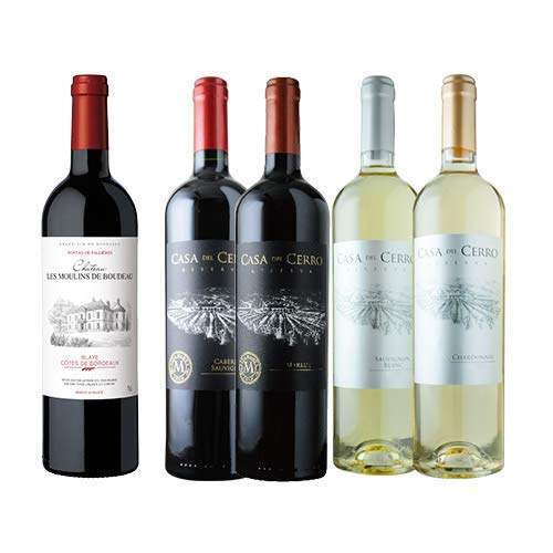 金賞ボルドーと五大シャトー醸造家ワインセット 赤3本&白2本 ワインセット