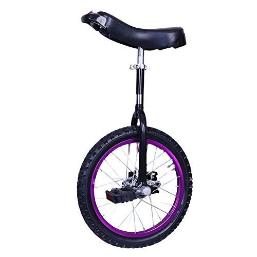 YYLL Viola Monociclo Utilizzato for Adulti Professionale Acrobazie Monociclo Bicycle Wheel Monociclo a Perfetta Tenuta di butile Rotella della Gomma in Bicicletta (Color : Purple, Size : 16inch)