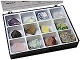 Minerales Crudos Cojea a 12 tipos de Piedras brutos de lithothérapie y de colección