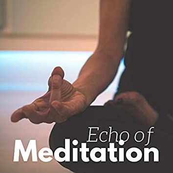 Echo of Meditation - Spiritual Fitness Songs for Awakening