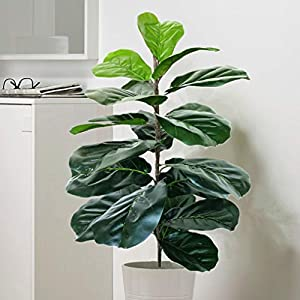 Silk Flower Arrangements Artificial Fiddle Leaf Fig Tree Twig Faux Ficus Lyrata Plants Greenery for Home Office Yard Indoor and Outdoor Decoration - No Pot Included (1 Branch - 28 inch)