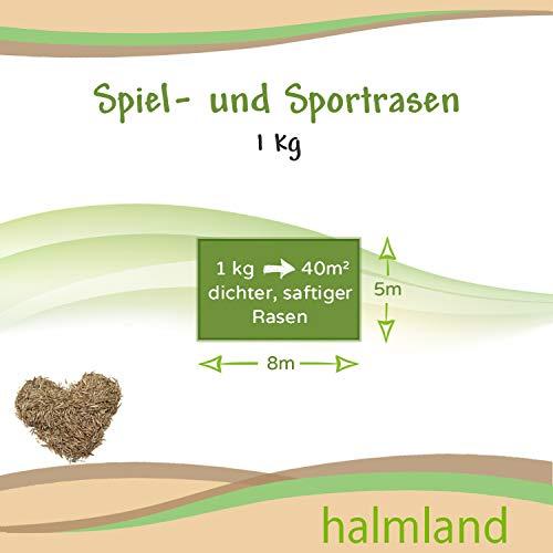 Premium Rasensamen schnellkeimend 1kg = 30-40m² Rasen | dürreresistent, robust, tiefgrün | Ideal für Neuansaat und Nachsaat | Rasensaat Grassamen Sport und Spiel