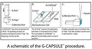G-Biosciences 786-001 - G-Capsule - Genecapsule (G-Capsule) For Extracting Nucleic Acids And Proteins, Pack Of 55