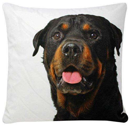 Perro Rottweiler Imprimir Blanco Chenille Cotton 17 x 17 pulgadas Cojín para sofá cama Sofá