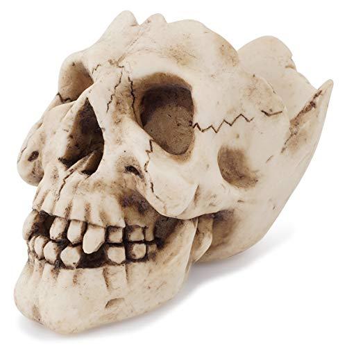 Cráneo roto Cenicero gótico esqueleto cabeza de escritorio decoración Cenicero