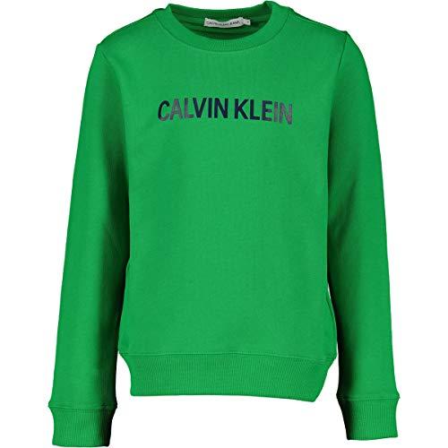 Calvin Klein Jongen Truien Groen