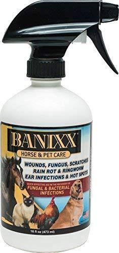 Banixx Horse and Pet Care 16 oz