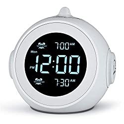 Welgo Dual Alarm Clock Radio for Weekday/Weekend, 6 Wake Up Sounds, 0-100% Brightness Dimmer, Adjustable Volume, Battery Powered, FM Radio with Sleep Timer, Earphone Jack, Small Size for Bedroom, Kid
