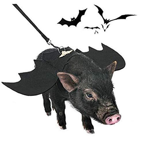 LAANCOO Disfraz de murcilago de perro, disfraz de Batman con correa, campana de calabaza y anillo para perros, cosplay, fiesta, Navidad, eventos especiales