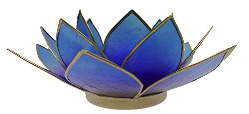 Trimontium TL12014G Teelichthalter Meeresschimmer in Form Einer dreiblättrigen Lotusblüte, Durchmesser Circa 14 cm, Capiz-Muschel, Info, Mix Bicolor blau/lila, Aluminium, Bunt, ca. 14 x 14 x 5 cm