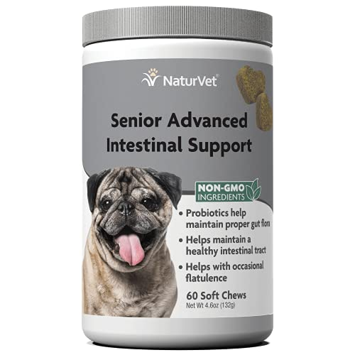 Top 10 best selling list for intestinal supplements for dogs