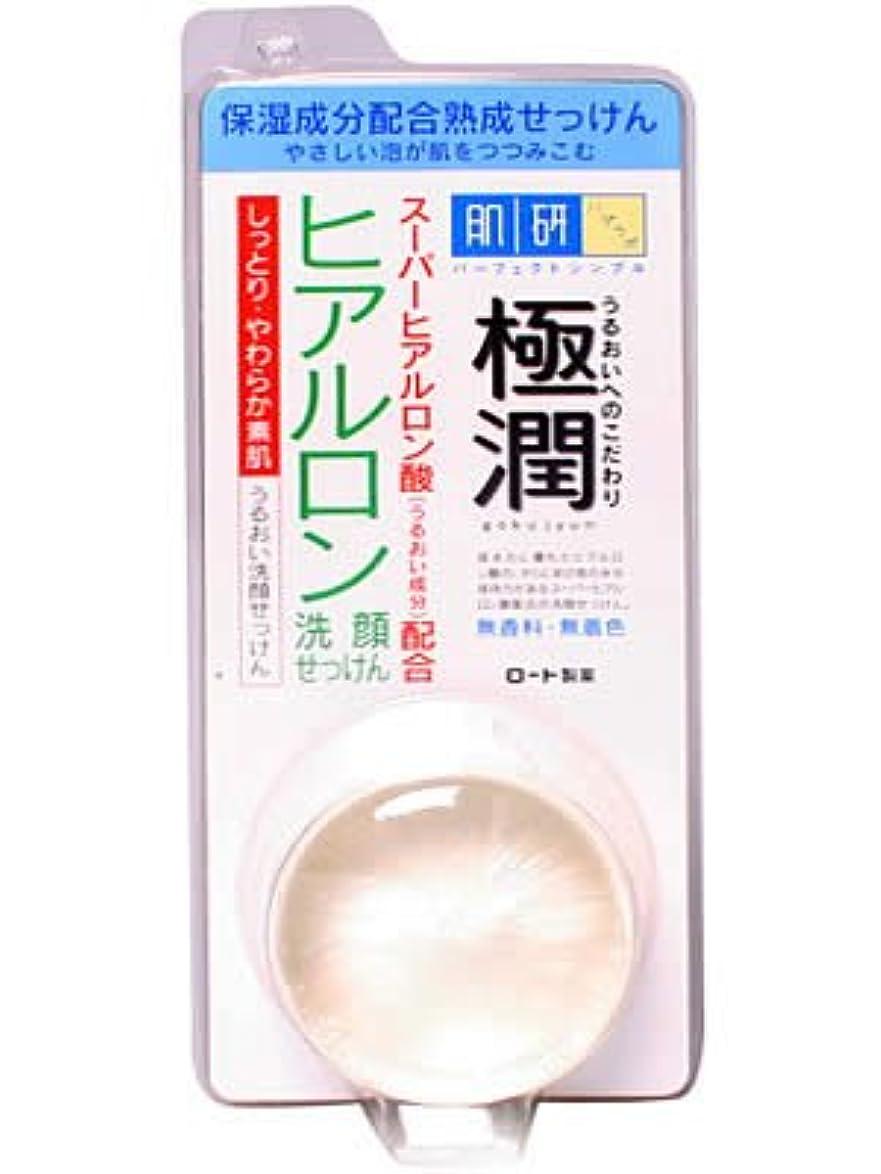 偏心食事スクラップ肌研 ハダラボ 極潤ヒアルロン洗顔せっけん 60g