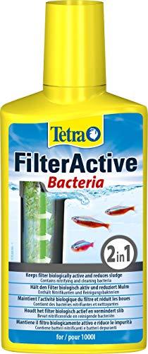 Tetra FilterActive 250 ml - Contiene bacterias iniciadoras vivas y bacterias limpiadoras reductoras de lodo ✅