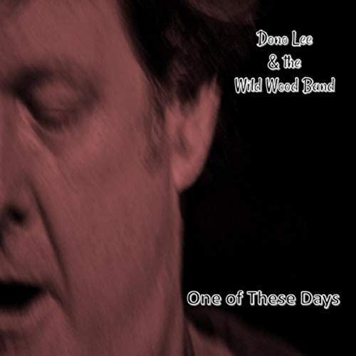 Dono Lee & the Wild Wood Band
