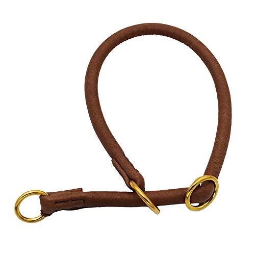 JHS Lederhalsband Rundleder   Dressurhalsband aus weichem Leder mit robusten Messingbeschlägen (60 cm)