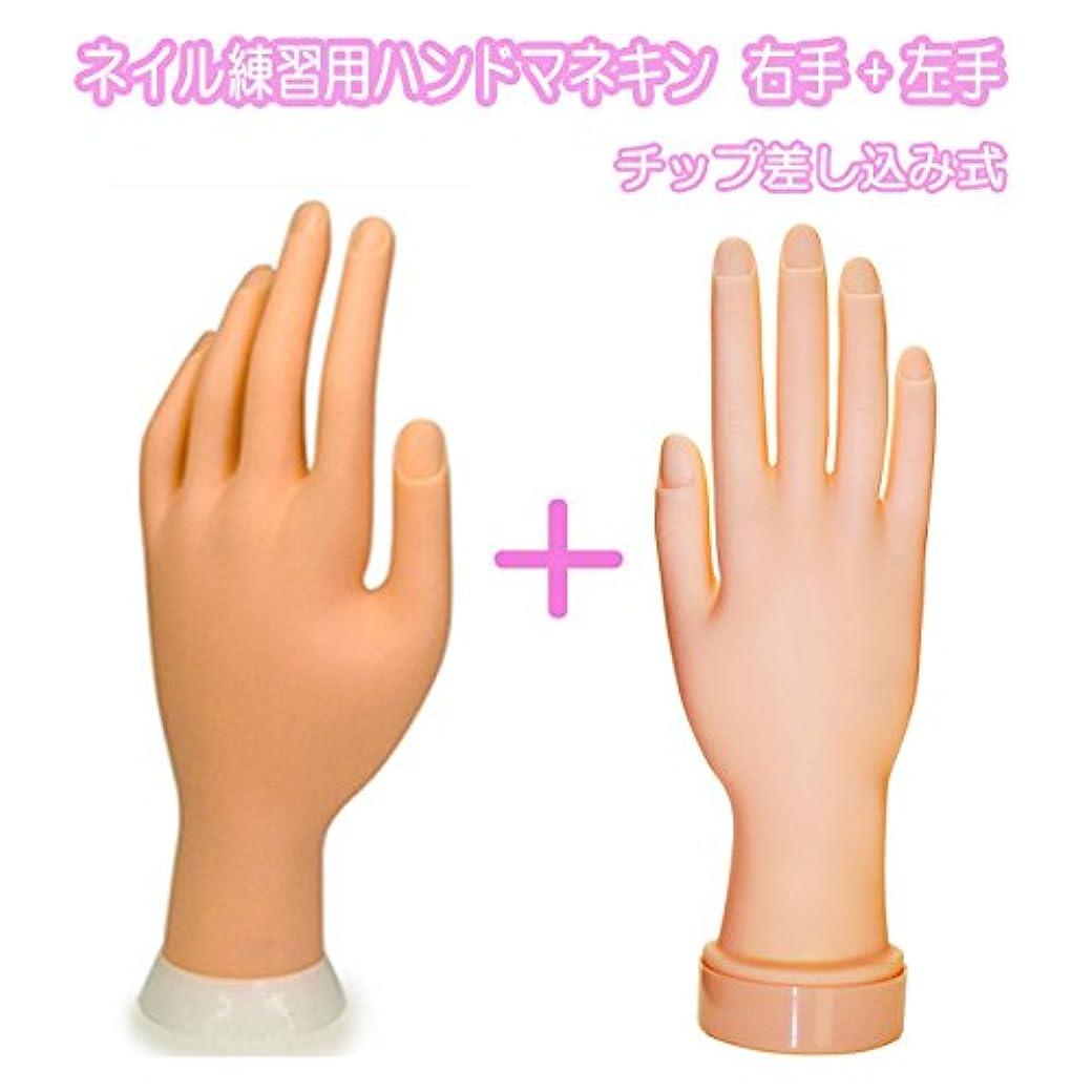 費やす白鳥ロッドネイル練習用ハンドマネキン2個(右手/左手)/チップ差し込み式 (右手1個+左手1個)