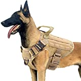 PETODAY Tactical Dog Harness,Working Dog Training Molle Vest for Medium Large Dogs,with 2X Metal Buckle,Military Dog Harness with Handle,Hook and Loop Panel for Dog Patch (Black, (Chest 28'-35'), M)
