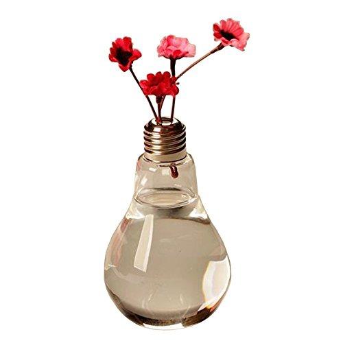 Vi.yo Vaso creativo in vetro a forma di lampadina trasparente per piante di fiori, contenitore idroponico per vaso da fiori per casa, ufficio, decorazione per matrimoni