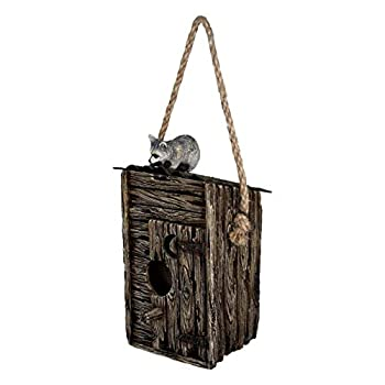 River s Edge Products Birdhouse - Outhouse/Raccoon