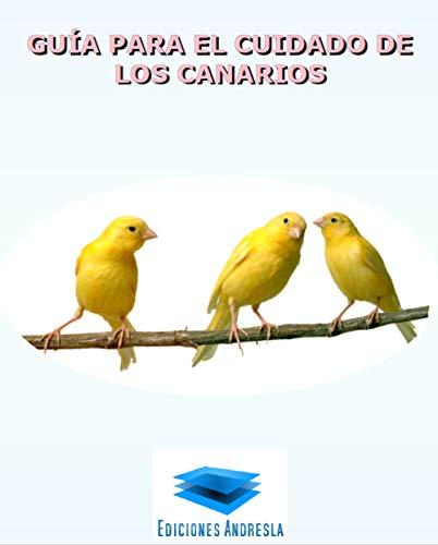Guía para el cuidado de los canarios