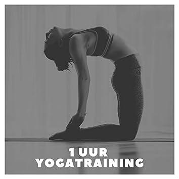 1 Uur Yogatraining: Heilzame Yoga Hatha en Nidra-Oefeningen Muziek voor Beginners (Afvallen, Zelfzorg en Welzijn)