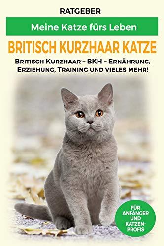 Britisch Kurzhaar Katze: Britisch Kurzhaar Katze Ratgeber - BKH Katze - Erziehung, Ernährung und Pflege (Katzenrassen)