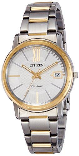 Citizen FE6014-59A