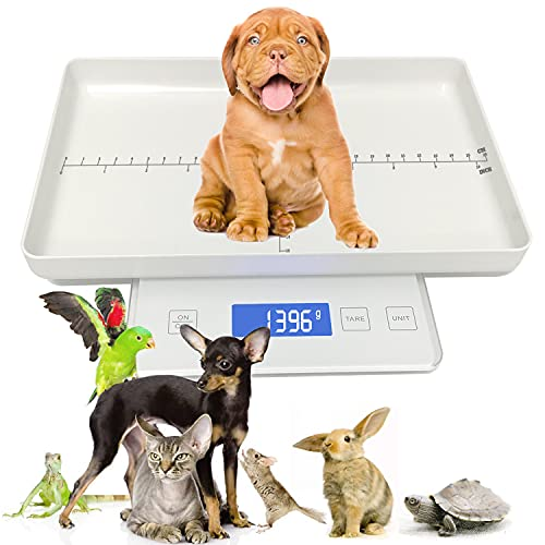 Digital Pet Scale, Small Animal Scale Puppy Scales Multi-Function LCD Electronic Scales Capacity (33lbs/15kg) Height (10in/26cm) for Measuring Hamster/Hedgehog/Kitten Small Animals (Mini Pet Scale)