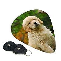 ピック 6枚セット ギターピック 子犬のゴールデンレトリバー ティアドロップ型 スリップレス 0.71mm