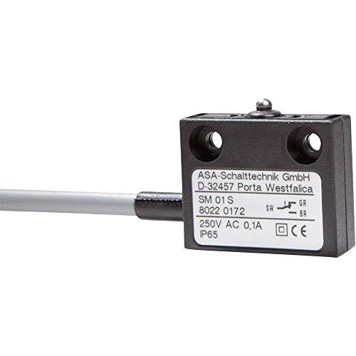 ASA Schalttechnik Mikroschalter SM 01 S 250 V/AC 0.1 A 1 x EIN/(EIN) IP65 tastend 1 St.