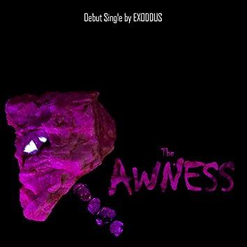 The Rawness