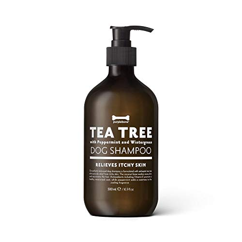 Purplebone Shampoo per cani con albero di tè alla menta viola e menta piperita idrata i capelli e allevia il prurito della pelle - 500 ml / 16.9 fl oz