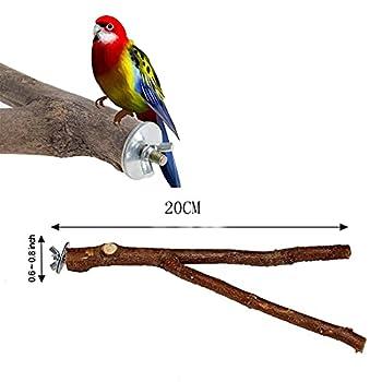 SweetJelly 2 Pièces Perchoir en Bois Naturel pour Perroquet, Perchoirs en Bois Naturel,Accessoires de Cage à Oiseaux,Jouets pour Perruches Accessoires,pour perroquets, Petites perruches, calopsittes