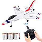 EagleStone RC Plane 2.4GHz 2 Channel Remote Control Airplane with Gyro and 3 Batteries (45 Mins), Easy to Fly F-16 Model for Adults, Beginners and Advanced Kids