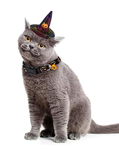 WODISON Funny Pet Dog Cat Halloween Costume with Cool Pumpkin Bell Collar and Pumpkin Hat for Cat and Small Medium Large Dog