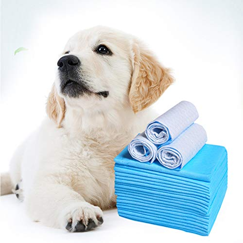 100 PCS Pee Pads - Puppy Pads XL - Wee Wee Pads for Dogs - Dog Pee Pad - Pee Pads for Dogs - Dog Pads - Puppy Pads Pet Traning Pads - Training Pads for dogs Dog Pee Pads Dog Training Pad Pet Pads