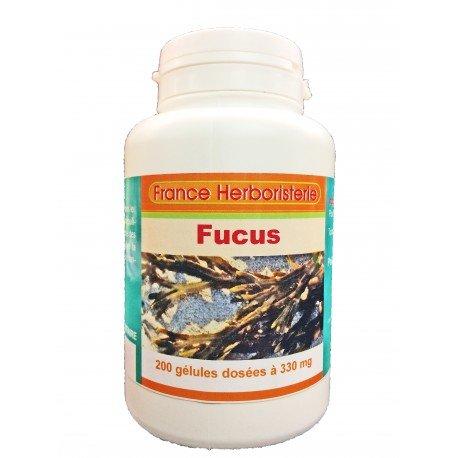 GELULES FUCUS vésiculeux 200 gélules doséés à 330 mg poudre pure.
