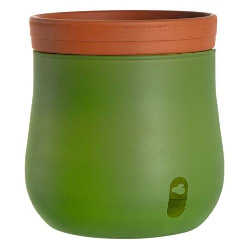 Leonardo Serra 057777 Pot de Fleurs avec système d'irrigation Automatique Vert Hauteur 241 mm