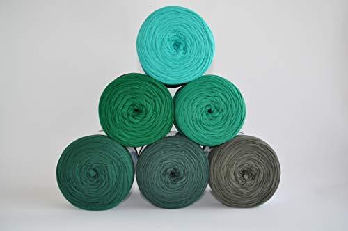 Textilgarn Baumwollegarn Stoffgarn Grün 650g, 120m für Taschen, Körbe, Utensilo, Teppiche (Schlamm)