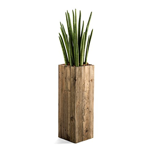 "Pflanzkübel ""Woodline High Cube"" Dark Flame Wood Eckig Hoch Holz - 72x24.5x24.5cm- F469"