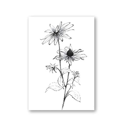 Wildflower poster en grafiek schets plant anemoon muur canvas vintage foto keuken decoratie f C, 60x80cm